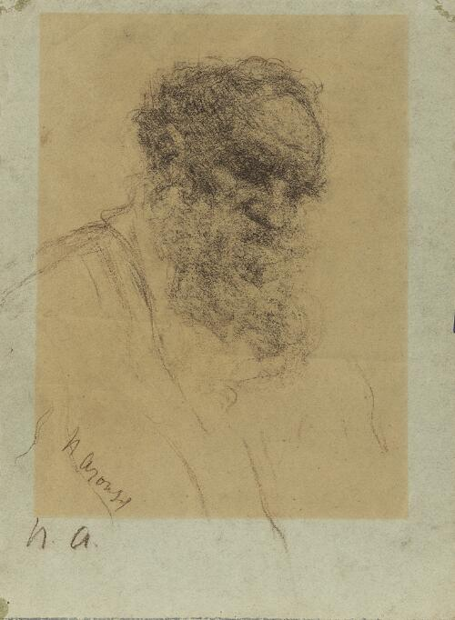 A Portrait of Count Leo Tolstoy