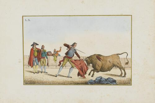 Collection of Principal Moves in a Bullfight: Killing the Bull