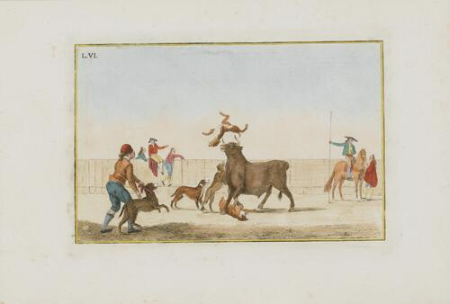 Collection of Principal Moves in a Bullfight: Dogs Are Set Loose on the Bull