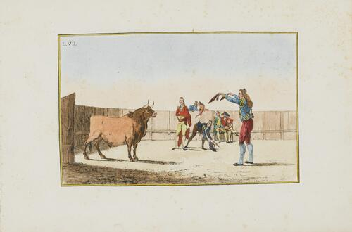 Collection of Principal Moves in a Bullfight: Provoking the Bull with Banderillas